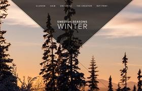 網站建設之瑞典季節設計
